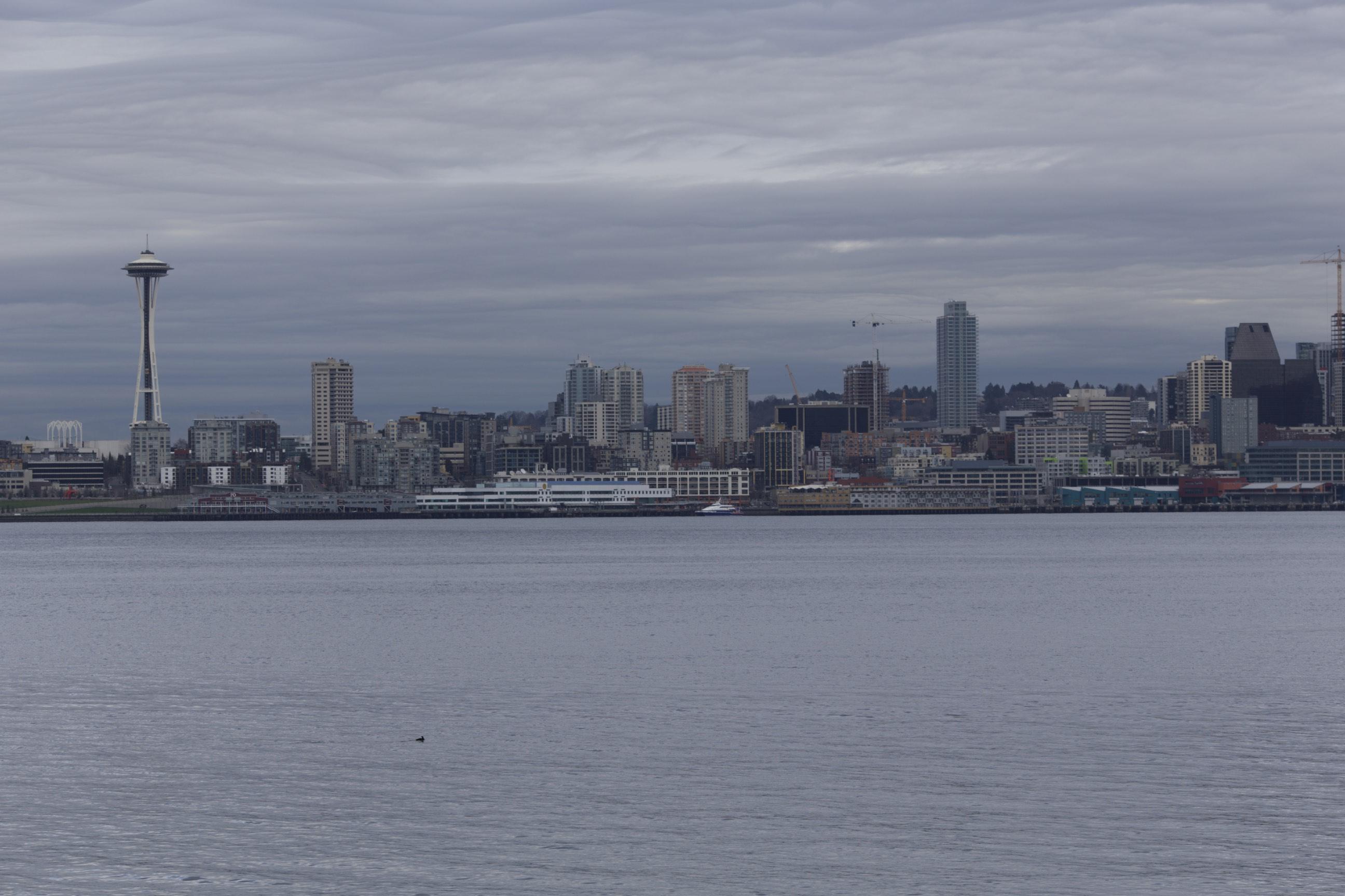 Seattle 02-12-2015 - 0073